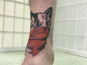 Tattoo Fanart Katze Fußgelenk Permanent Art