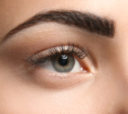 Augenbrauen Nachher